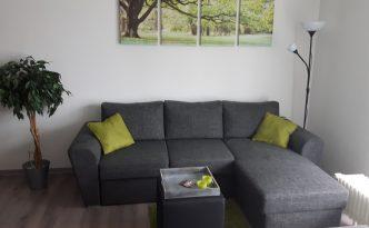 appartement-harz8